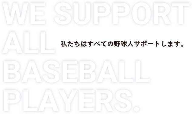 WE SPORTS ALL BASEBALL PLAYER